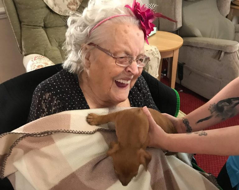 Puppy Therapy at a Care Home in Belper